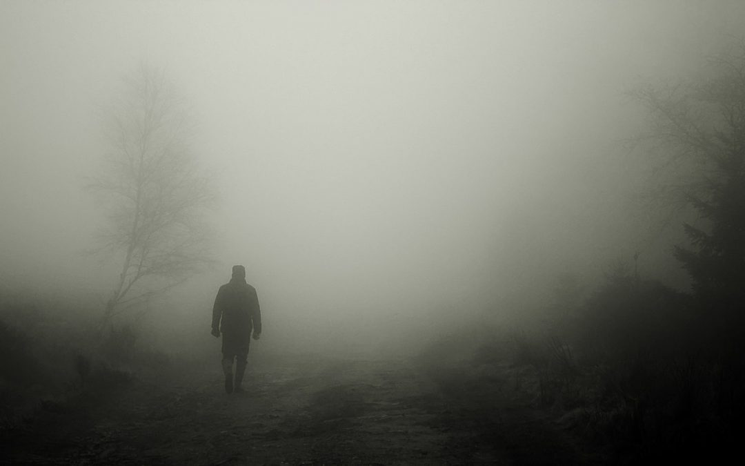 Blog fog